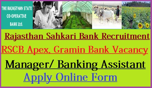 rscb-recruitment-2018 Online Form Gramin Bank on