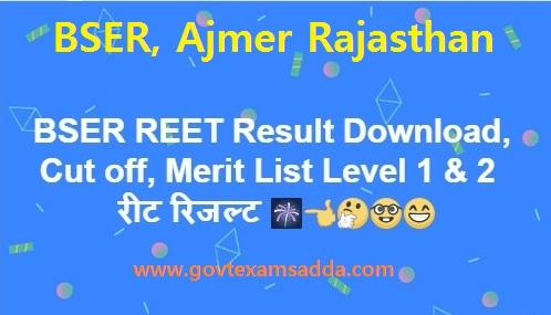 BSER REET Result 2018